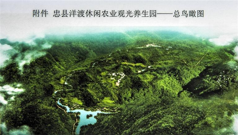 忠县洋渡休闲农业观光养生园总鸟瞰图